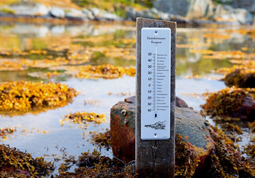 Kragerø - Blindtarmen - Miljø